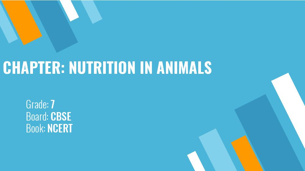Teaching Material Class 7 Physics Nutrition in Animals - Page 1