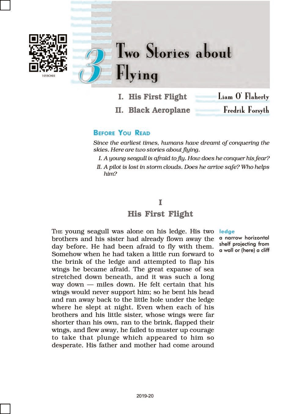 NCERT Book Class 10 English (First Flight) Chapter 3 Two Stories about Flying; His First Flight; Black Aeroplane How to Tell Wild Animals, The Ball Poem - Page 1