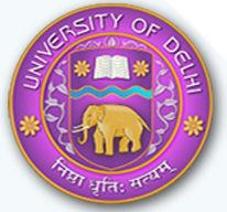 DU SOL logo
