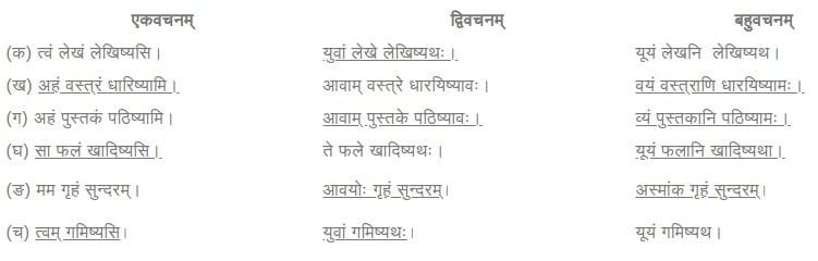 NCERT Solutions for Class 6 Sanskrit Chapter 9