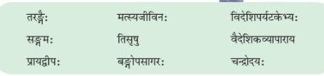NCERT Solutions for Class 6 Sanskrit Chapter 6