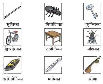 NCERT Solution for Class 6 Sanskrit Chapter 2