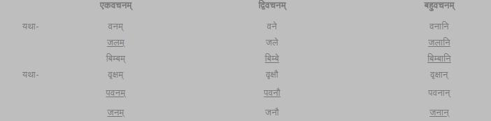 NCERT Solutions for Class 6 Sanskrit Chapter 5